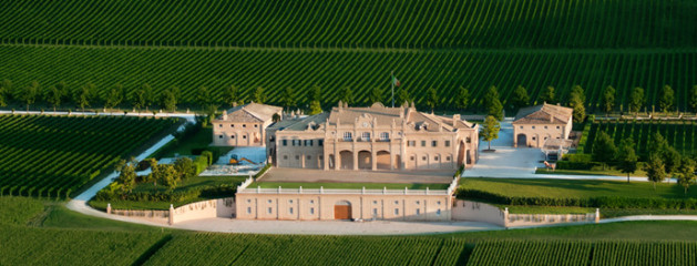 Wow,wow,Winery